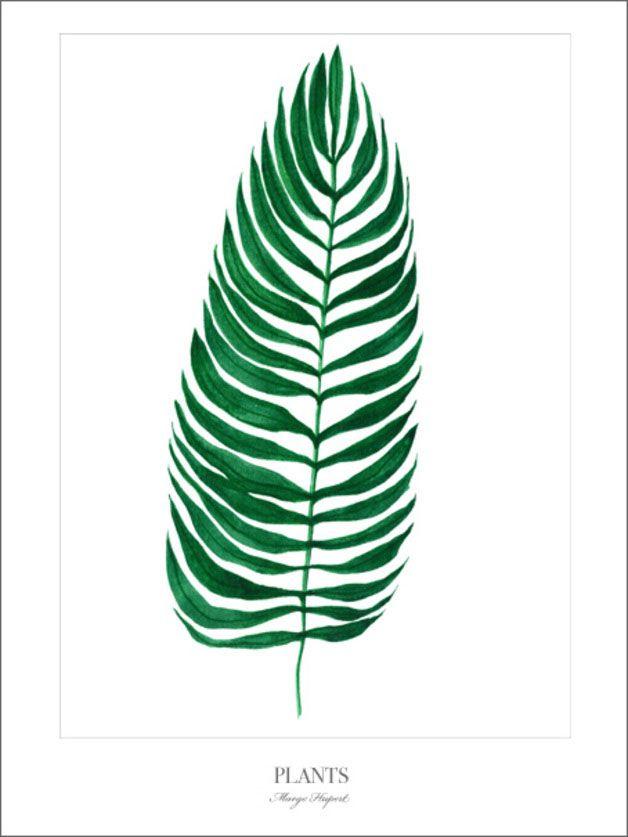 Palm Prints