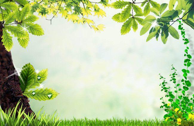 الإطار ألبوم بسيطة أوراق الشجر والزهور Trees To Plant Leaf Background Plant Leaves