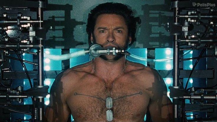 Ver X Men Origenes Wolverine 2009 Online Latino Hd Pelisplus Wolverine Hugh Jackman X Men Wolverine