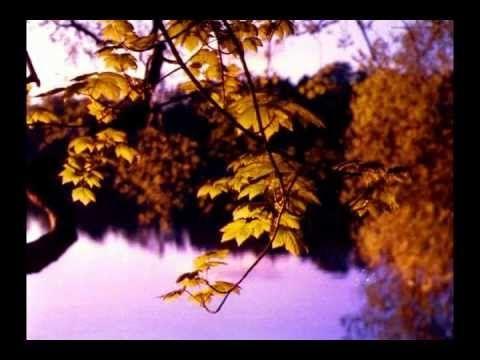МУЗЫКА ДЛЯ ДУШИ. НА ДУШЕ СТАНОВИТСЯ СВЕТЛО. Music Sergey CHEKALIN. Autumn. Beautiful music. - YouTube