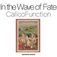 Calico Function | Calico Function on Native Funk | Music
