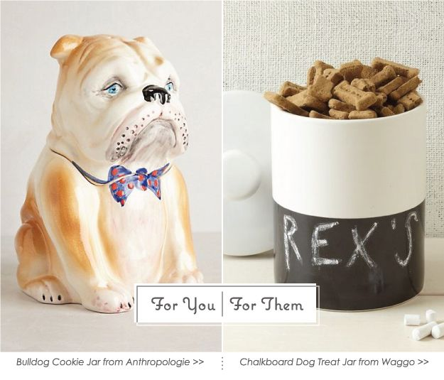 For You | For Them: Pet Home Décor Ideas #PoochPawty #HomeDecor #PetDecor