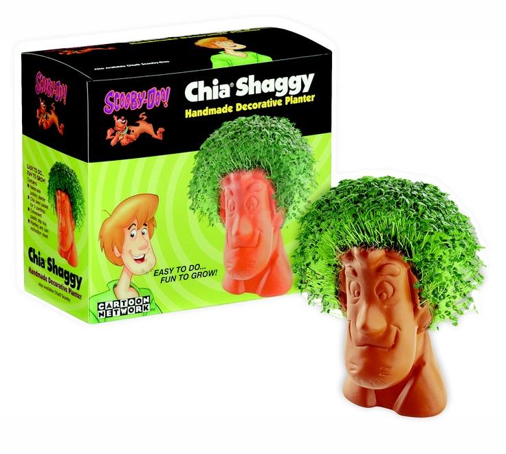 Chia Shaggy (discontinued) Chia pet, Obama chia pet