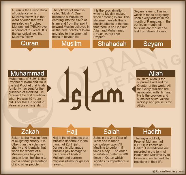 Learn islam basics