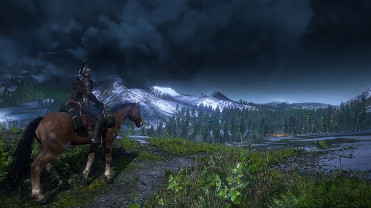 CD Projekt Red has announced that the Witcher 3 will not be exclusive to one console! Which console will you play it on?