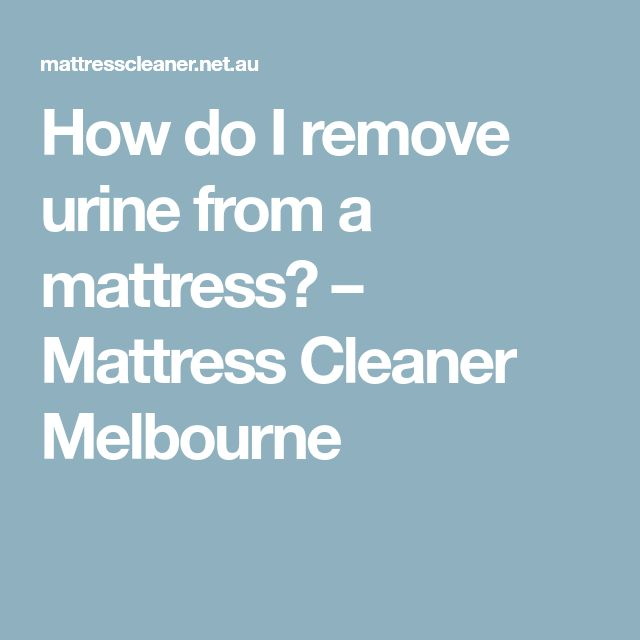 How do I remove urine from a mattress? – Mattress Cleaner Melbourne