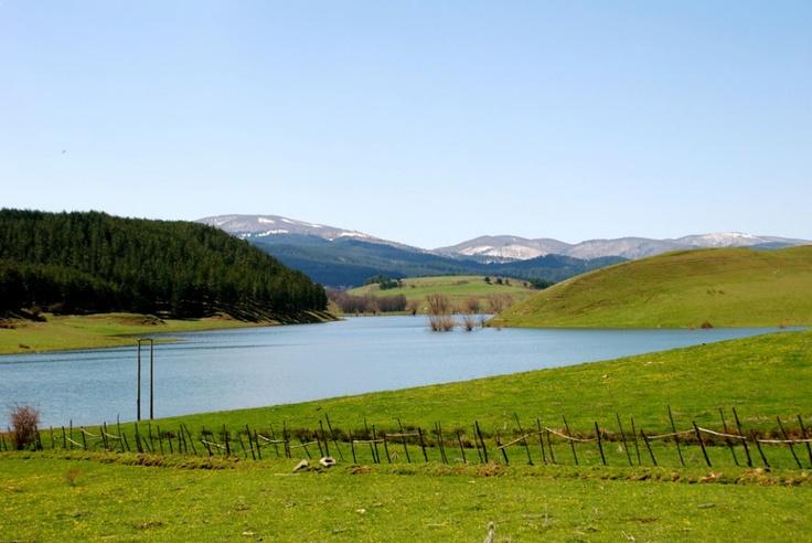 Lago Ariamacina in primavera in #Sila #Calabria