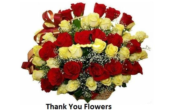 https://www.flowerwyz.com/thank-you-flowers-delivery-thank-you-flower-arrangements.htm  Click Here For Thank You Gifts,  Benny Fine This isn't working. Cinnamon So I'm gonna tie it on, I just conceived that you greased one's palms. sorry What are you mouthing thank you blossoms about.  Thank You Baskets,Best Thank You Gifts,Unique Thank You Gifts,Good Thank You Gifts,Thank You For Gift