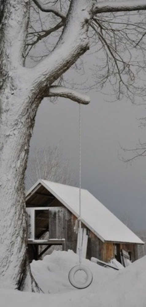 Heavy Snow On Old Tire Swing & Barn