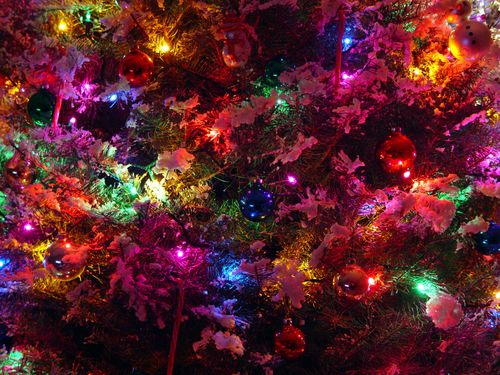 HD Wallpaper And Background Photos Of Christmas For Fans Bright Colors Images