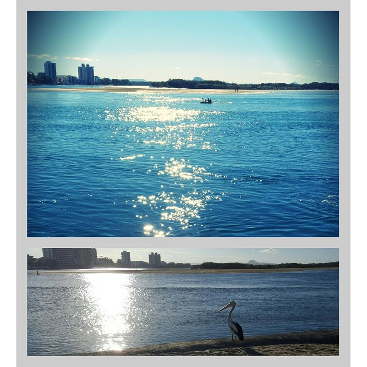 The Beautiful Cotton Tree area. Only a 10 min drive from the park.