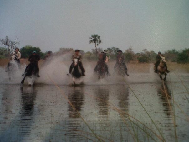 Galloping in the water...best ever!!!!!!!!!!!