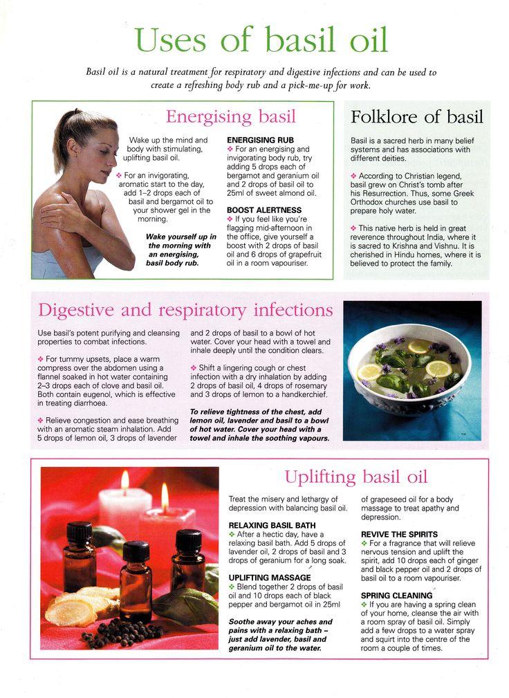 Uses of basil oil