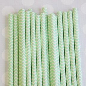 Paper Straws: Mint Chevron