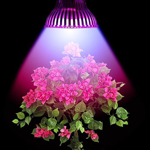 Special Offers - Cheap LVJING 30w E27 Led Plant Grow Light Lamp 15 Led Red and Blue for Hydroponic Plants Flowers Vegetables Greenhouse Hydroponic Lighting 85-265V - In stock & Free Shipping. You can save more money! Check It (October 06 2016 at 12:32AM) >> http://growlightusa.net/cheap-lvjing-30w-e27-led-plant-grow-light-lamp-15-led-red-and-blue-for-hydroponic-plants-flowers-vegetables-greenhouse-hydroponic-lighting-85-265v/