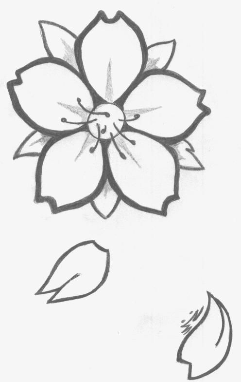Dessin fleur de cerisier by jashin sama33 craft rock in 2019 cherry blossom drawing - Dessins a dessiner facile ...