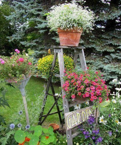 Num cantinho repleto de coisas, um desntupidor de pia enfiado num cabo de vassoura vira cachepó,escada velha apoio de vasos, é a vida simples!