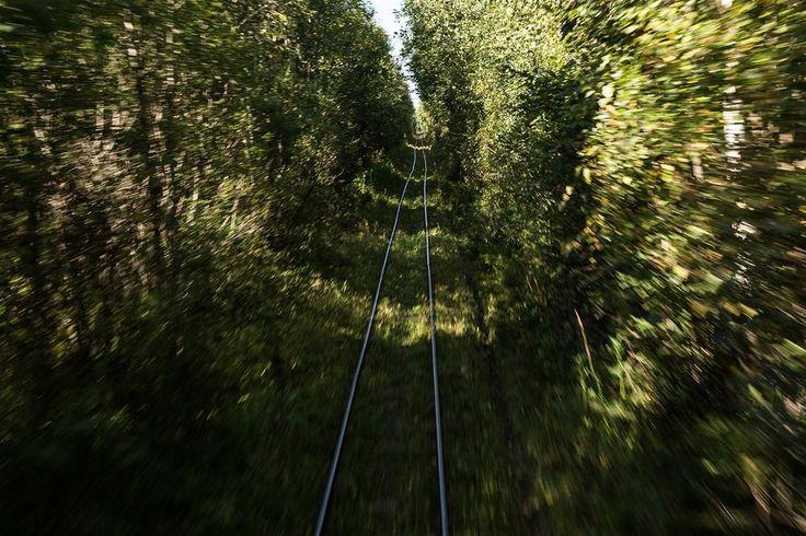 Diep in de Russische bossen liggen twee dorpjes die op geen enkele manier verbonden zijn met de rest van de wereld, op één treintje na.
