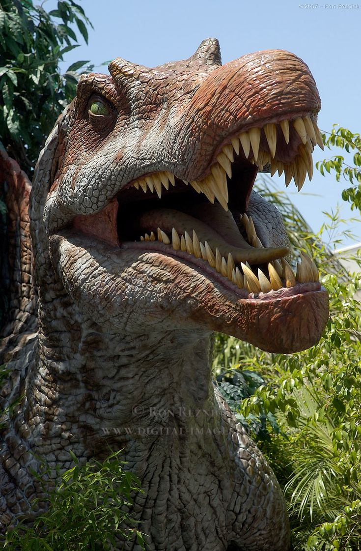 Jurassic Park III : The Spinosaurus Snapping A T