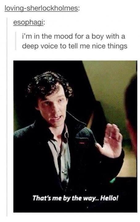 Hi Sherlock! ♥️♥️♥️