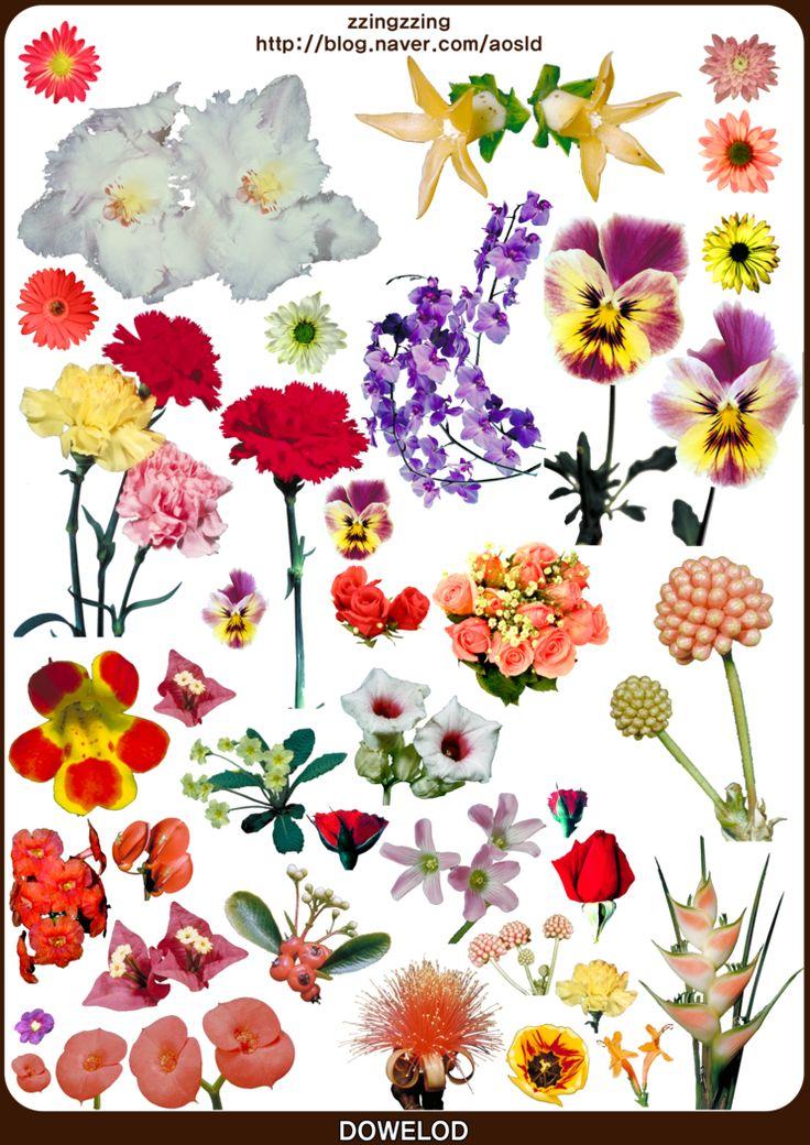 꽃 스티커