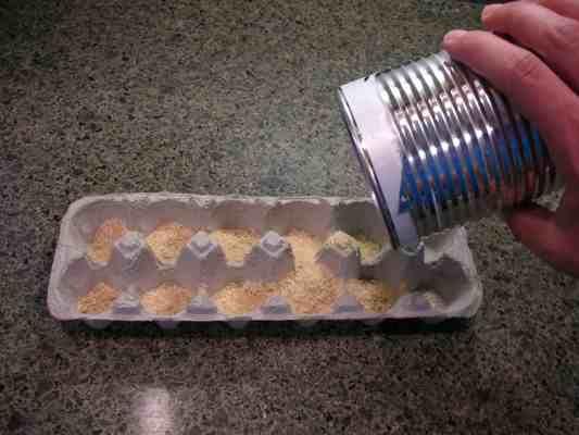 Egg Carton Fire Starter How To Make Your Own Christmas