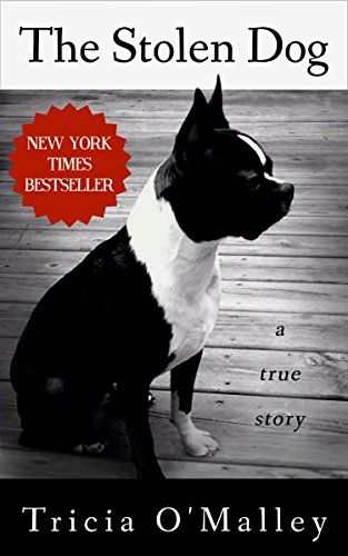 1241 best dog lovers library images on pinterest dog lovers dog the stolen dog by tricia omalley httpamazon fandeluxe Epub