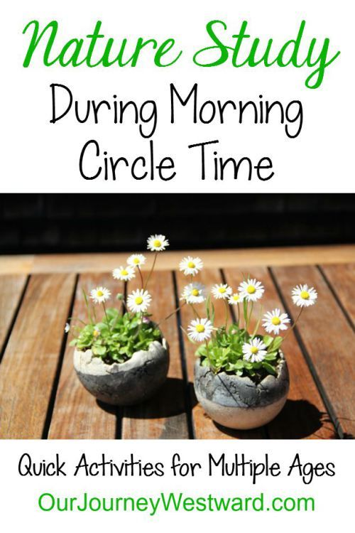 A wonderful list of quick nature activities to do during morning circle time!