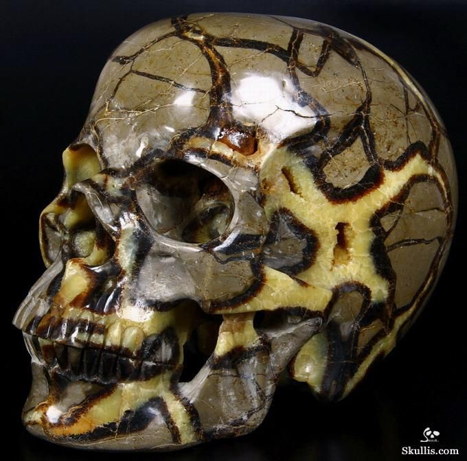 Dragon Septarian Stone Geode Crystal Skull Sculpture