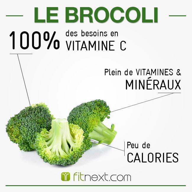 """LE BROCOLI : 3 fois plus riche en vitamine C que l'orange. 1 portion de brocoli couvre vos besoins quotidiens. Il est aussi riche en béta-carotène, acide folique, protéine, vitamine E, potassium, phosphore et calcium. Un """"super aliment""""pour vos repas ! Alors pourquoi s'en priver ?"""