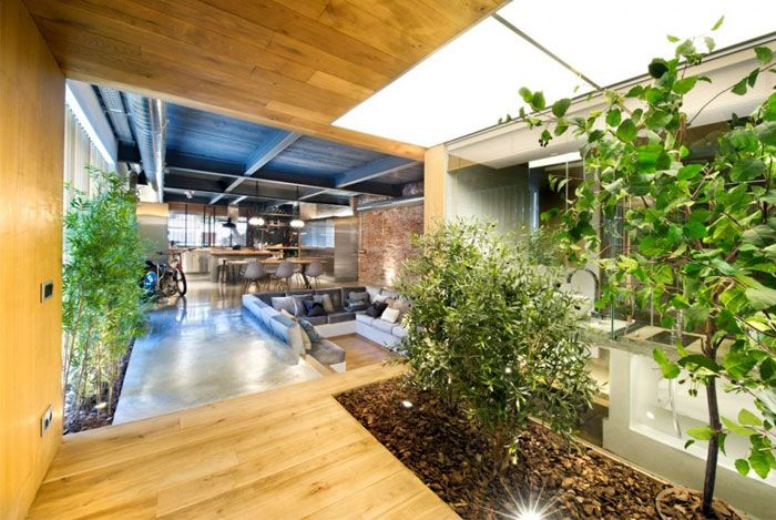 Industrial Loft Space With Fresh Green Decor plant grows spacious windows