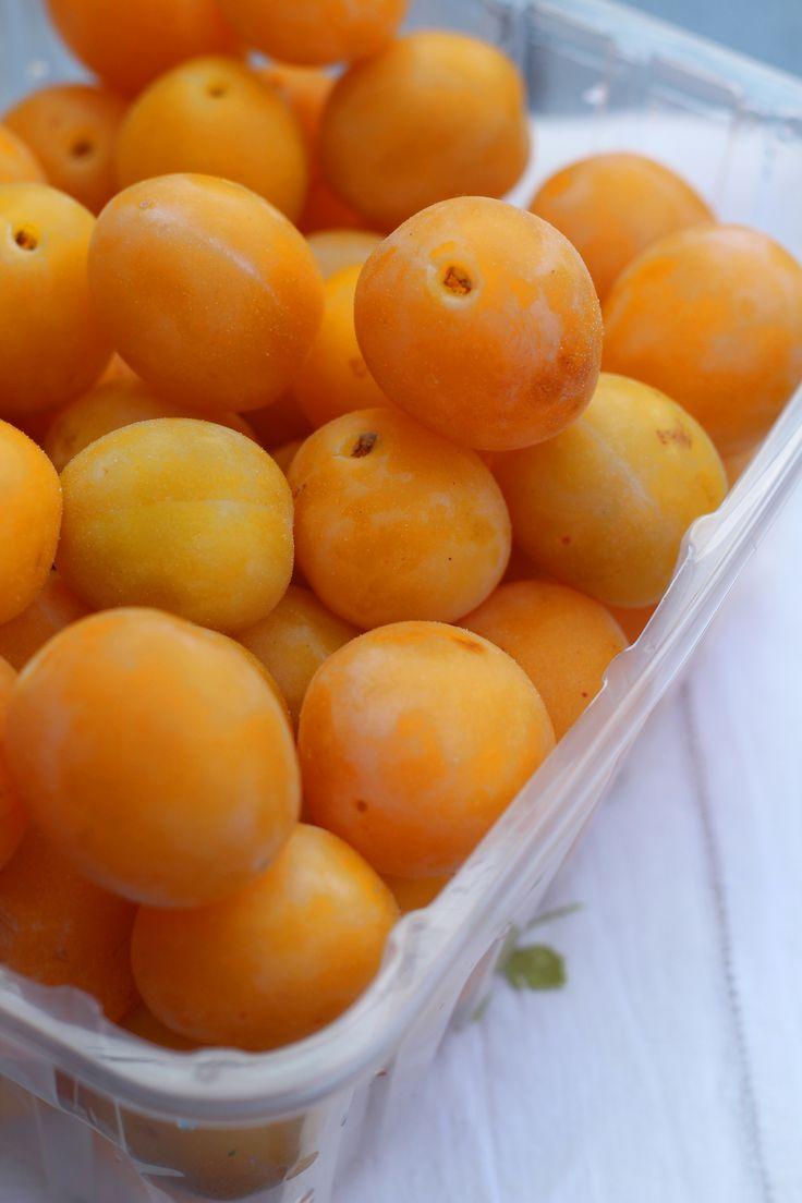 Kleine, süße Mirabellen für meine Mirabellen Marmelade mit Rosmarin