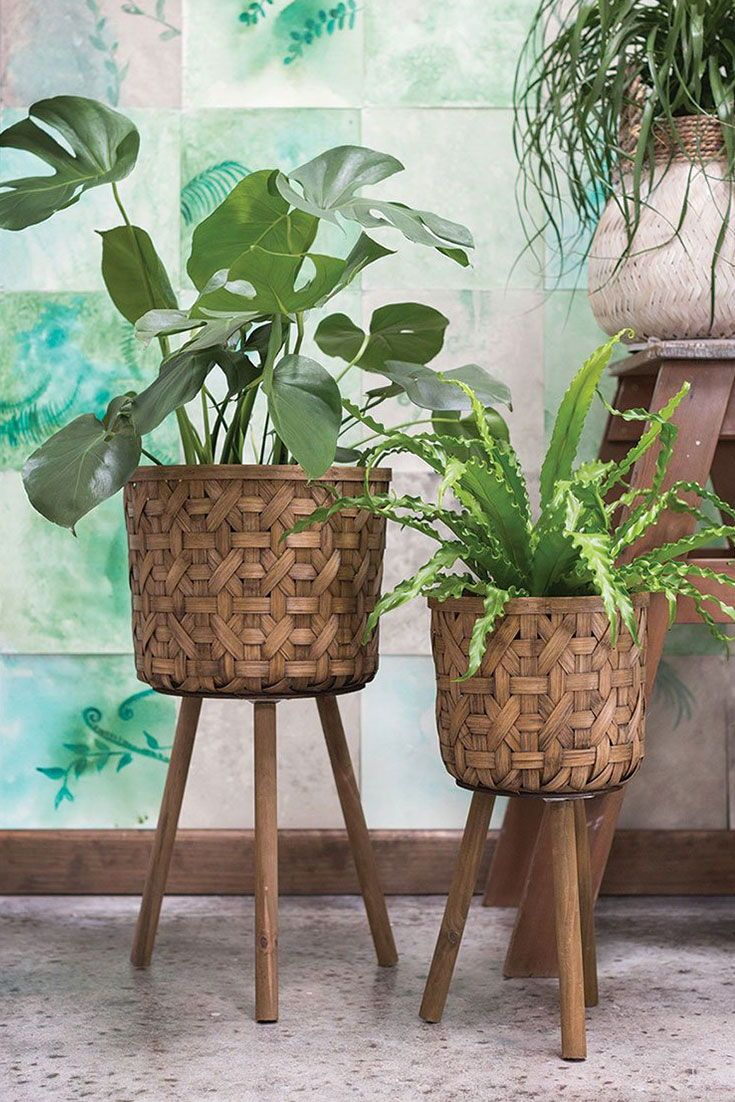 Browse Floor Plant Stands For Your Boho Home Decor At Afloral