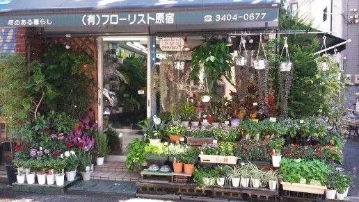 Floristería Tokyota