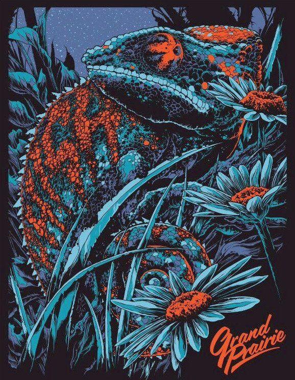 Phish Grand Prairie Concert Poster by Ken Taylor