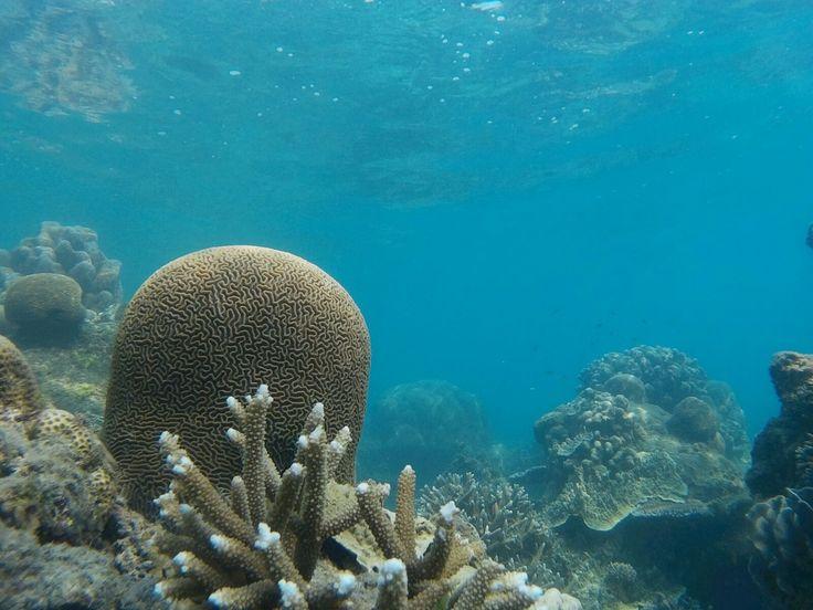 underwater tunda island banten