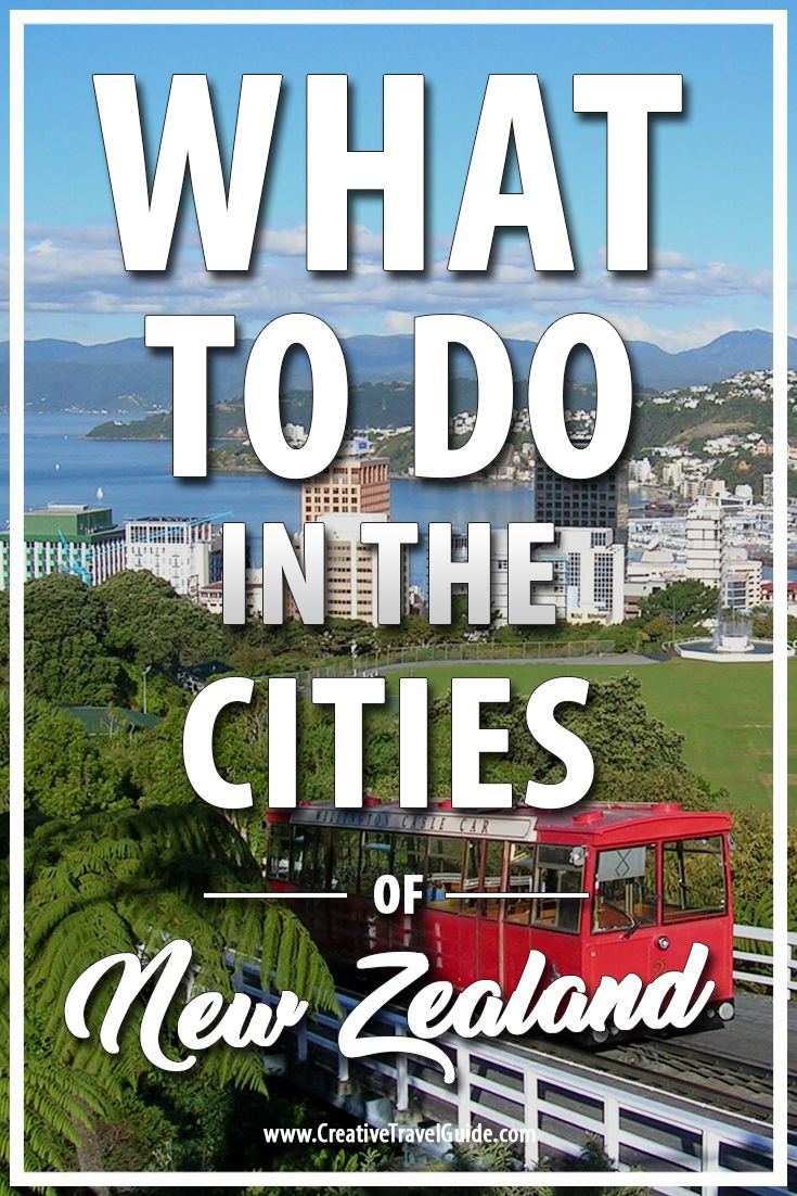 Visiting New Zealand, you may find yourself flying into the major cities. Why not plan some time exploring the fun things to do in the cities of New Zealand.