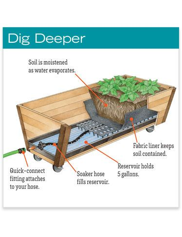 Elevated Rolling U-Garden Cedar Planter Box and Watering System — Buy Together and Save!