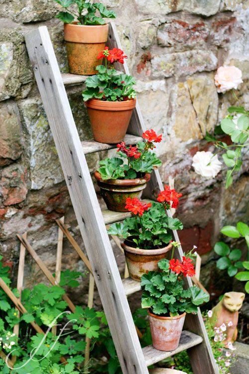 flowerpots   Foto e Fornelli -- vertical interest