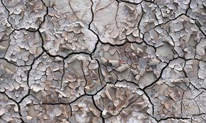 2016-09-10 Studies suggest that regenerating soil by turning our backs on industrial farming holds the key to tackling climate change.