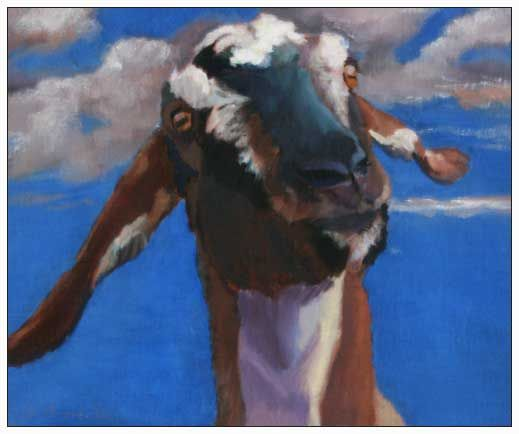 Deborah Bertola, Oil Paintings Farm Animal Portraits, Commissions, Goats from the Marin County Fair 2009, MALT Exhibit