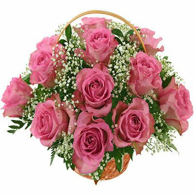 Send quickly fresh flowers gifts cakes dry fruits and much more with best price and good quality through our website, because we are provide fresh birthday flower cakes delivery in banglore http://www.bengaluruflorists.com/