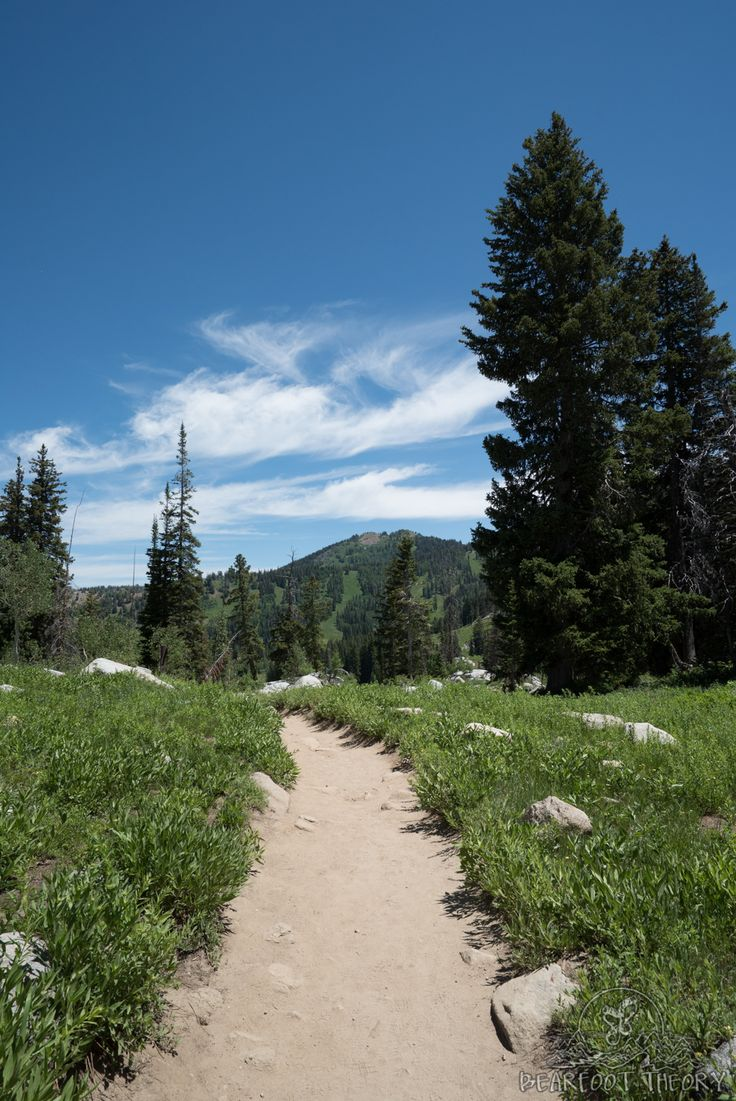 Hiking 101: Beginner Hiking Tips. This photo is from the Lake Mary Trail at Brighton Ski Resort.