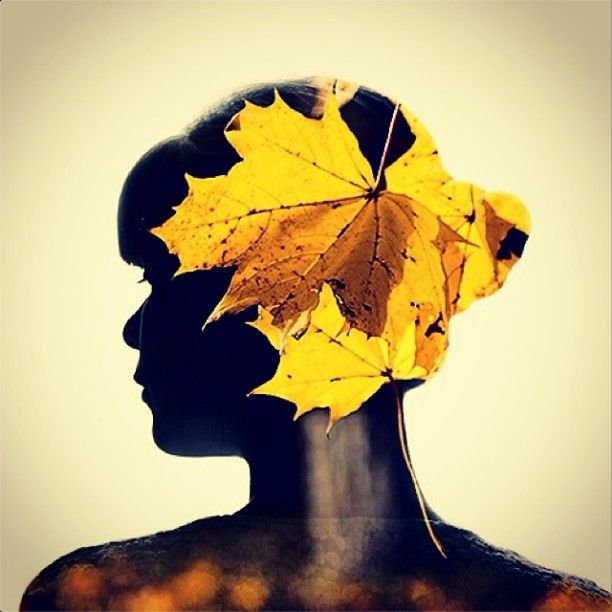 My profile picture. Meet me on Instagram! :)  @TheDianasBlog #dianaphotoapp #photoapp #photo #profile #leaves #autumn #girl #doubleexposure #blog #art #gallery #instaphoto #diana #face #pretty #beautiful #season #light