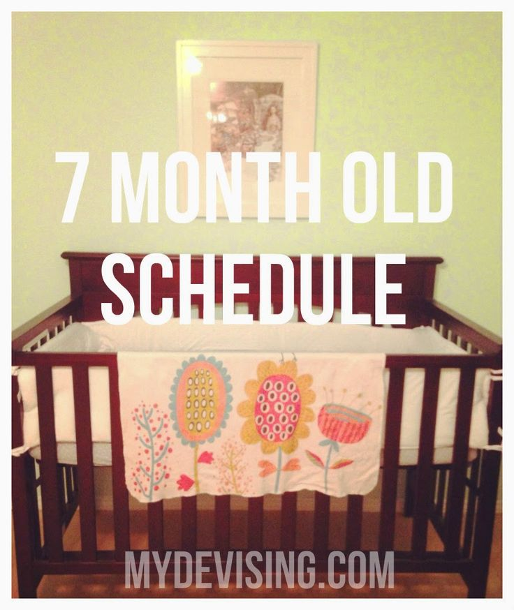 My Devising: 7 month old schedule