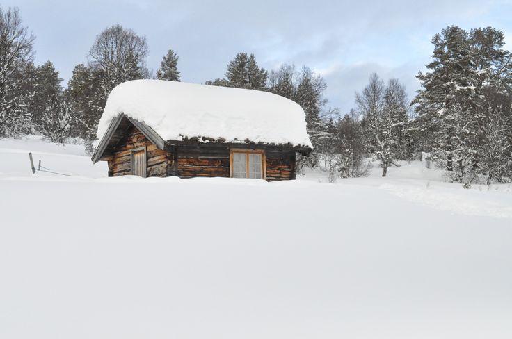 February 2014 - At Rauland, Norway