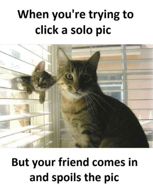 Lol To These 20 Funny Pictures