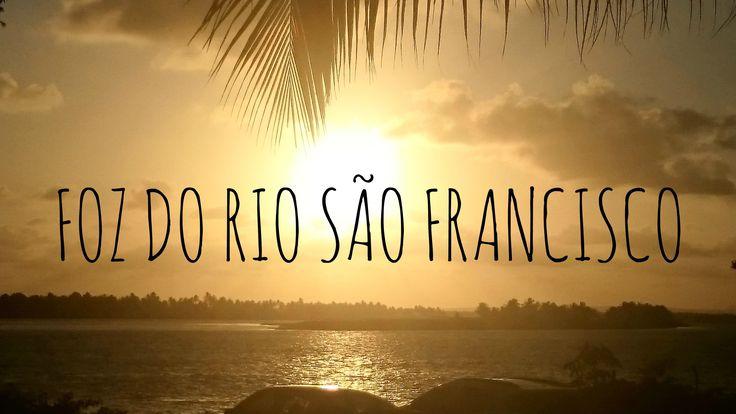 Foz do Rio São Francisco está em estado crítico