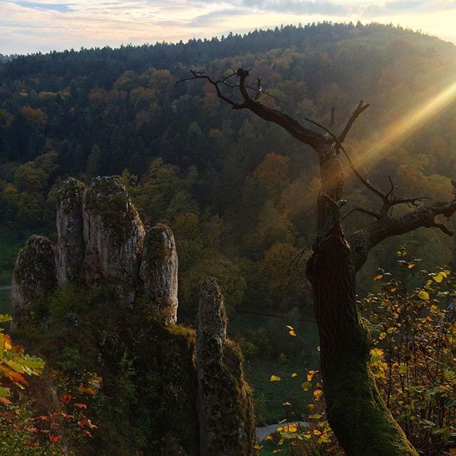 Скала-рукавичка) #ojców #park #poland #travel #shorttrip #nature #rocks #autumn #fall