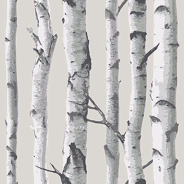 Birch Tree Peel And Stick Wallpaper In 2021 Birch Tree Wallpaper Tree Wallpaper Bedroom Tree Wallpaper